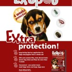 Exspot Tick and Flea Control for sale at Gauteng Hunts