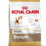 Royal Canin launches BEAGLE SPECIFIC food