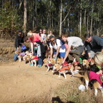 KZN beagle hunt 28 July 2013