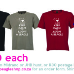 KEEP CALM and ADOPT A BEAGLE – T-shirt orders now open