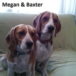 ADOPTION: Megan & Baxter