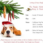 Beagle Christmas Braai at Walkhaven – 14 dec 2014