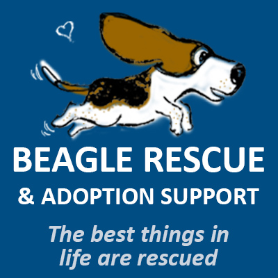 beaglerescue logo