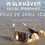 Walkhaven Social Morning – 26 April – 10am