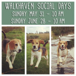 Walkhaven – May & June 2015