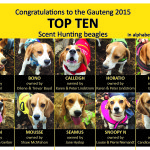 Gauteng Top Ten Announced 2015