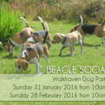 Walkhaven Social – Jan/Feb 2016