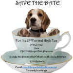 Charity High Tea in aid of SPCA and Beagle Welfare